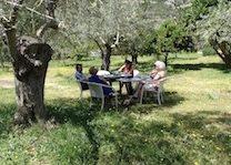 Philosophy class in garden